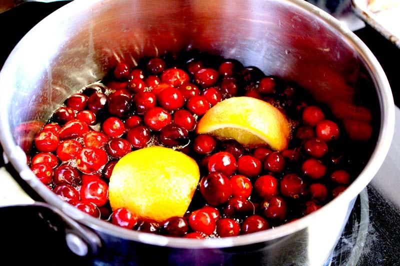 Best Fresh Cranberry Sauce